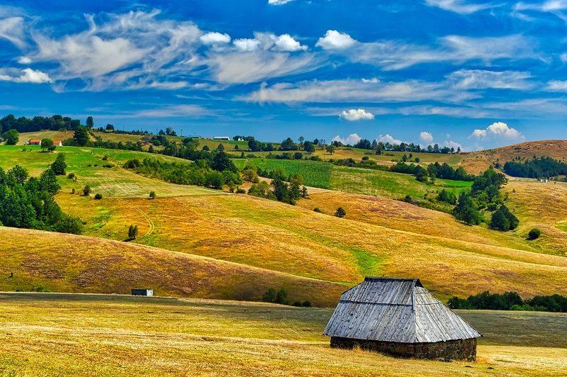 Farm,House,In,The,Field,,Zlatibor,,Serbia