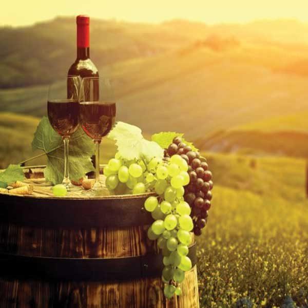 vinski-turizamr